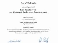sara-certyfikat-pozycjonowanie-transfer